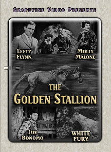 The Golden Stallion (1927 film)